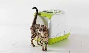 arenero o baño para gatos flip cat jumbo 58x45x42, importado