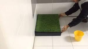 arequipa baño ecologico para mascotas chico