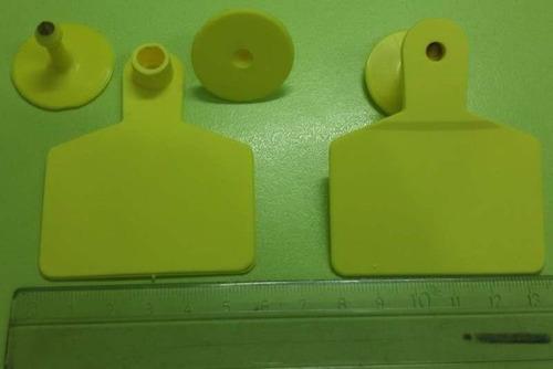 aretes 6 x 7 cm amarillo becerro mautas novillas gyr