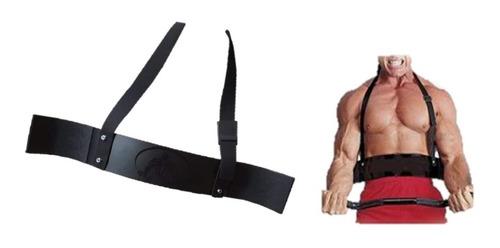 arm blaster barra gym, pesas, biseps, triceps