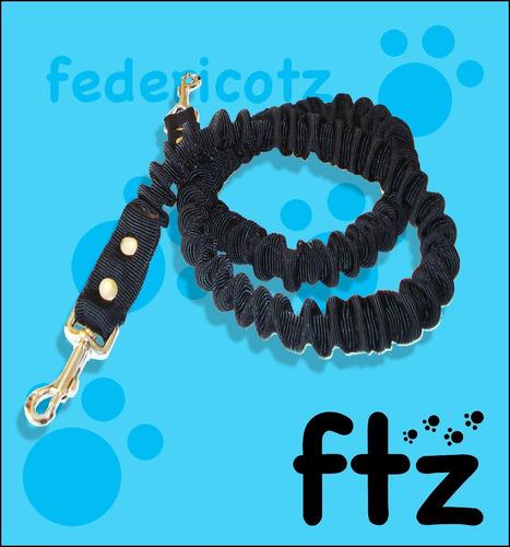 arnés + correa + cinturón canicross  perro collar pretal ftz