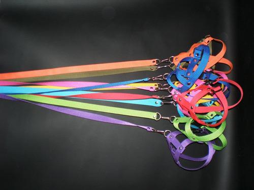 arnes de fibra 2.0  surtido de colores  solo x docenas