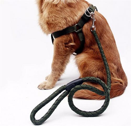 arnes para perro grande