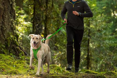 arnés para perros front range harness® en rosa - ruffwear