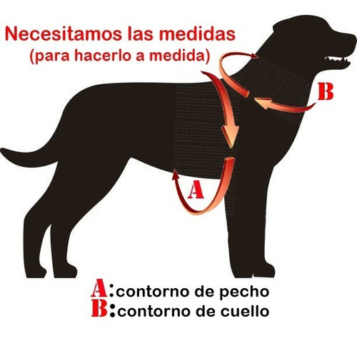 arnes pretal acolchado y cinturón  seguridad para perros
