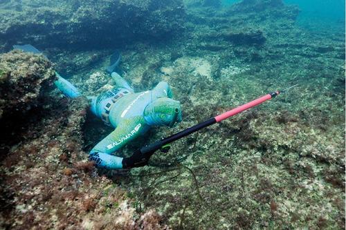 arpon pesca salvimar predathor 75, envio gratis