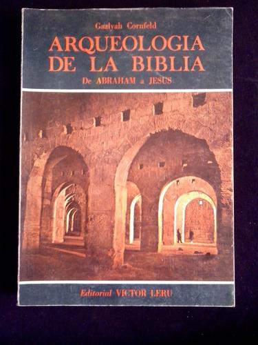 arqueologia de la biblia,  gaalyah cornfeld