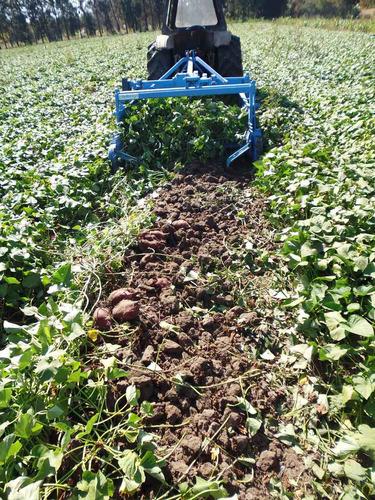 arrancadora cosechadora recolectora descoladora cebolla papa