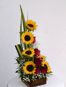 Arreglo Floral 6 Girasoles 5 Rosas Solo Entrega En Cdmx Df