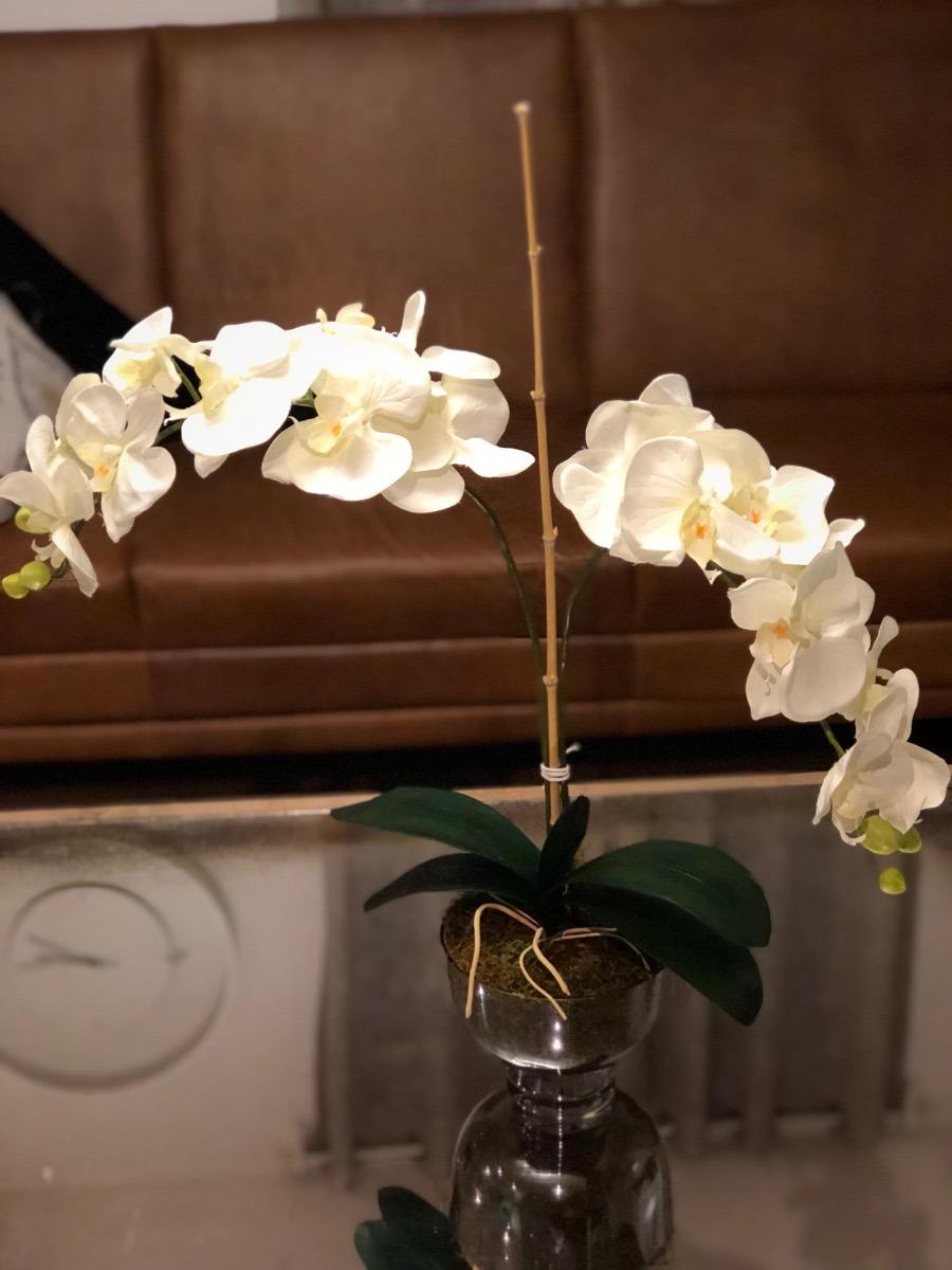 Arreglo Floral Orquídea 2 Varas Envío Gratis