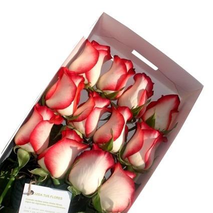 arreglos florales - caja de 12 rosas + globo y detalles