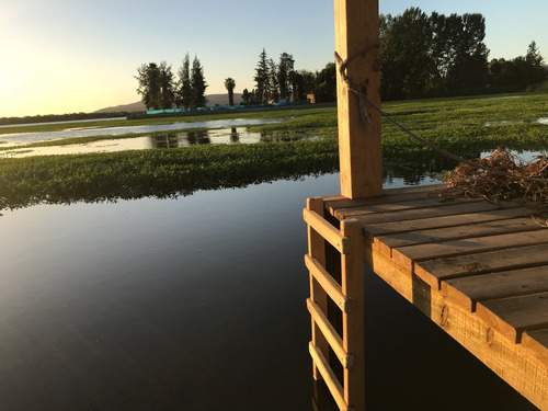 arriendo casa a orillas de lago rapel