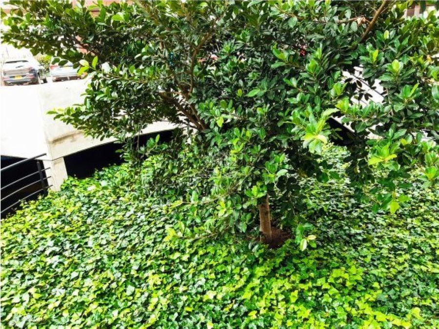 arriendo consultorio sabana park cajicá