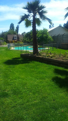 arriendo piscina durante el dia en la semana