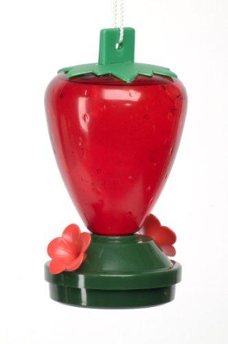 arte línea fresa alimentador de colibrí