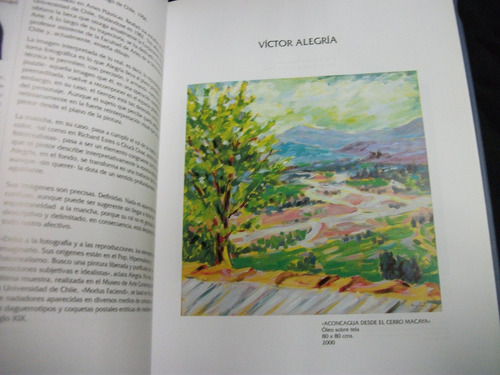 arte y paisaje, pinceladas del maule