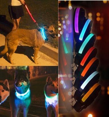 artículos para mascotas por mayor - veterinarias / pet shop