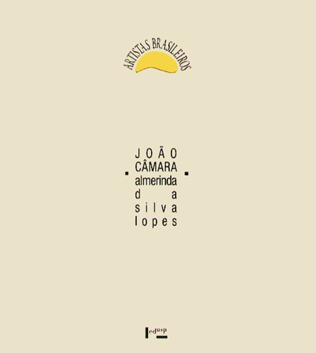 artistas brasileiros / joão câmara almerinda