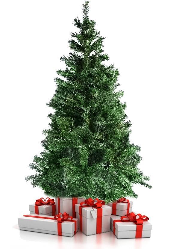 árvore De Natal Pinheiro Verde De 210 Metros 450 Galhos R