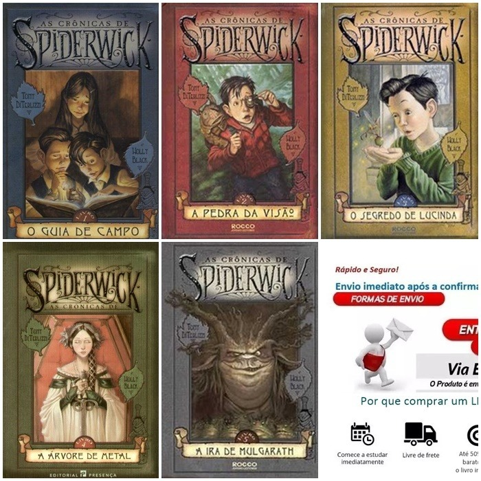 o livro as cronicas de spiderwick