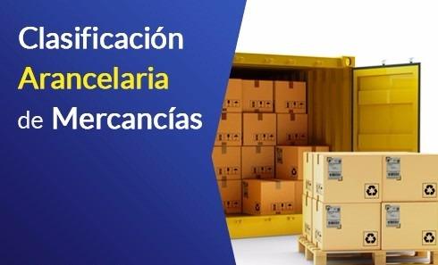 asesor comercio exterior y clasificación arancelaria