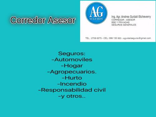 asesor corredor  de seguros           age seguros