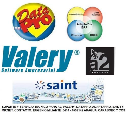 asesor soporte remoto profit a2 valery saint datapro mixnet