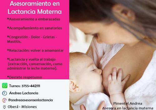 asesora en lactancia materna online