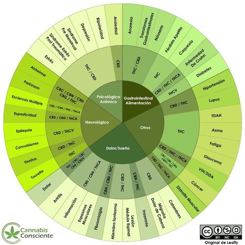 asesoramiento medico matriculado, cbd y aceites de cannabis