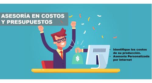 asesoría en costos y presupuestos para emprendedores