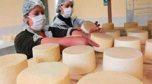 asesoria en queseras,tecnica de cuajo, bolsas rojas queso