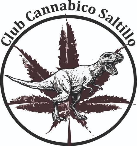 asesoría técnica sobre el cultivo y extracciones de cannabis