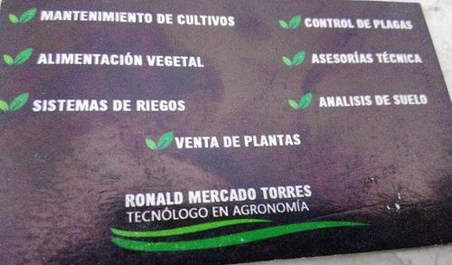 asesorías agrícolas