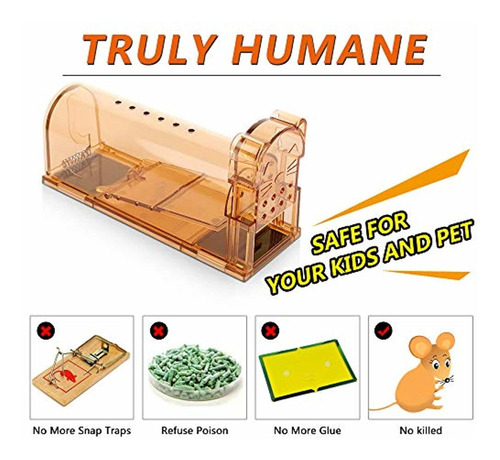 asprint humane mouse trap, live trap catch