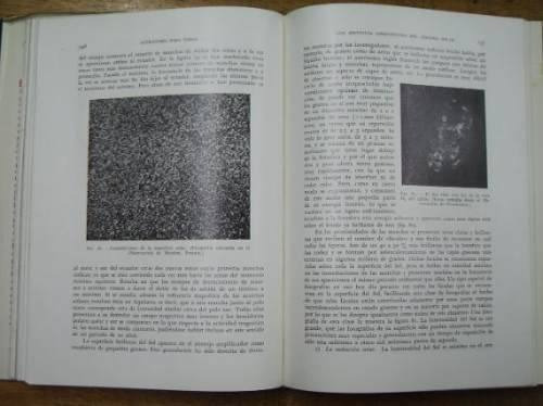 astronomia para todos - prof. dr. arthur krause