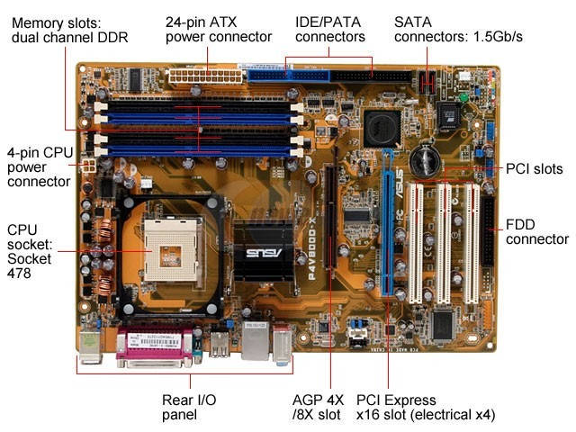 DRIVERS FOR ASUS P4V800D-X