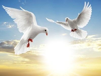 atención espiritual y renovación energética