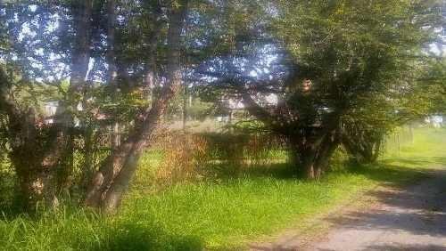 ¡atencion invercionistas! magnifico terreno en jiutepec