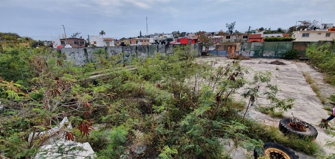 ¡atencion inversionistas! terreno en renta en colonia astill