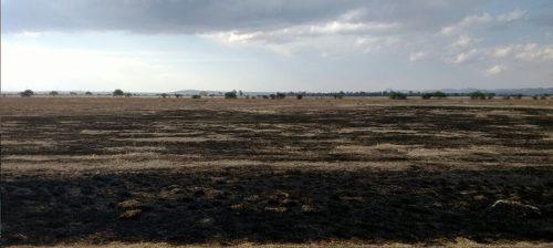 atención inversionistas terreno en san luis de la paz de 72 hectáreas