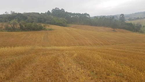 atibaia terrenos plainos de 1000 m² localização privilegiada