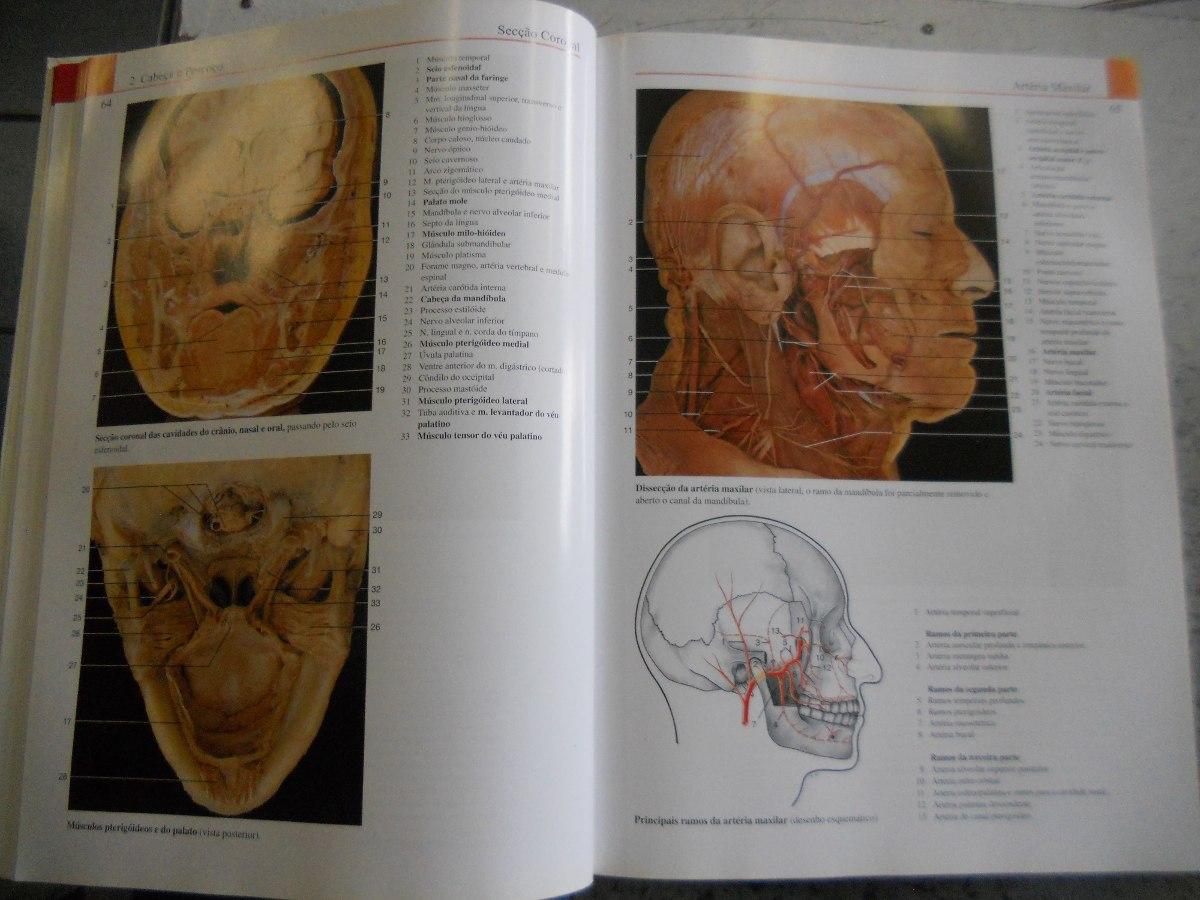 Atlas Anatomia Humana: Johannes W. Rohen, Chihiro Yokochi - R$ 260 ...