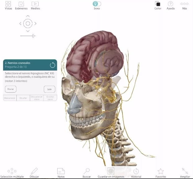 Atlas Anatomía Humana Programa 3d En Español + Pdf Netter - $ 12.000 ...