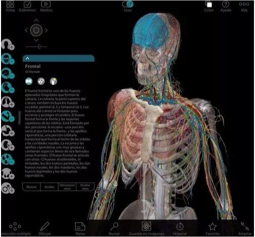 Atlas Anatomia Humana Programa 3d En Español + Pdf Netter - $ 2.980 ...