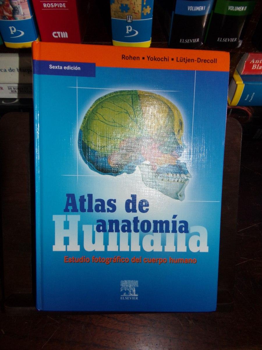 Dorable Atlas De La Anatomía Rohen Viñeta - Imágenes de Anatomía ...