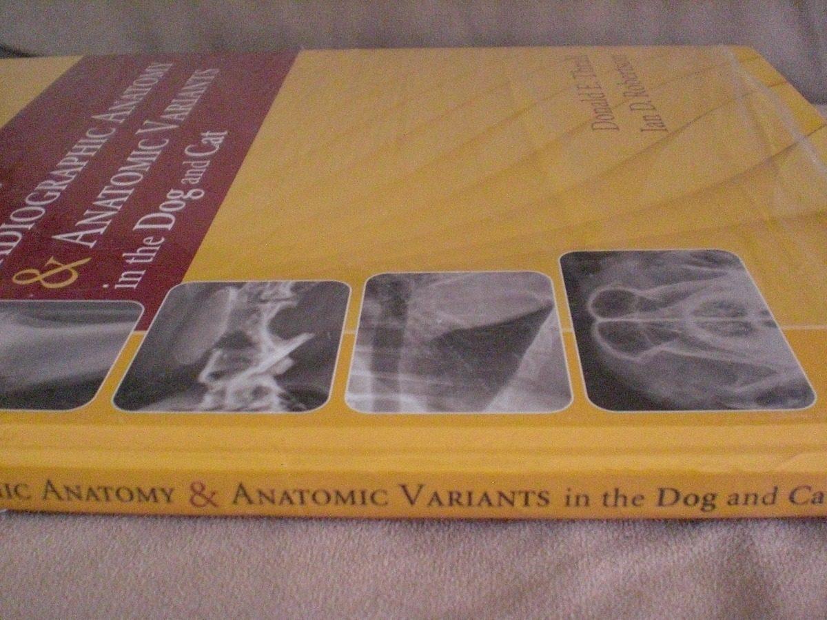Vistoso Szeged Departamento De Anatomía Regalo - Anatomía de Las ...