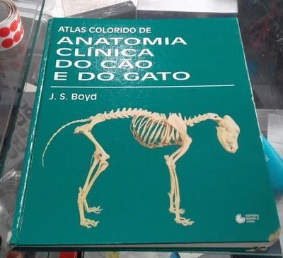 atlas colorido de anatomia clínica do cão e do gato