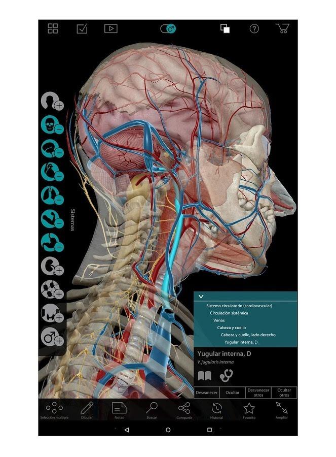 Atlas De Anatomía 3d 2017 - Bs. 40.000,00 en Mercado Libre