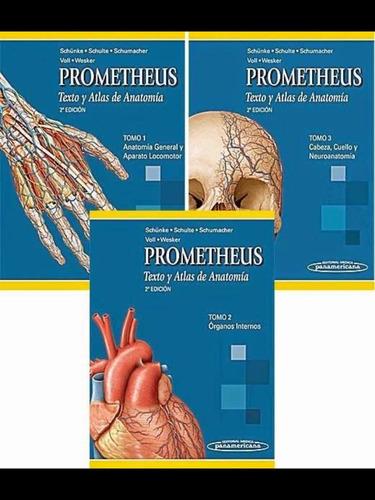 atlas de anatomia de prometheus 3 tomos pdf hd