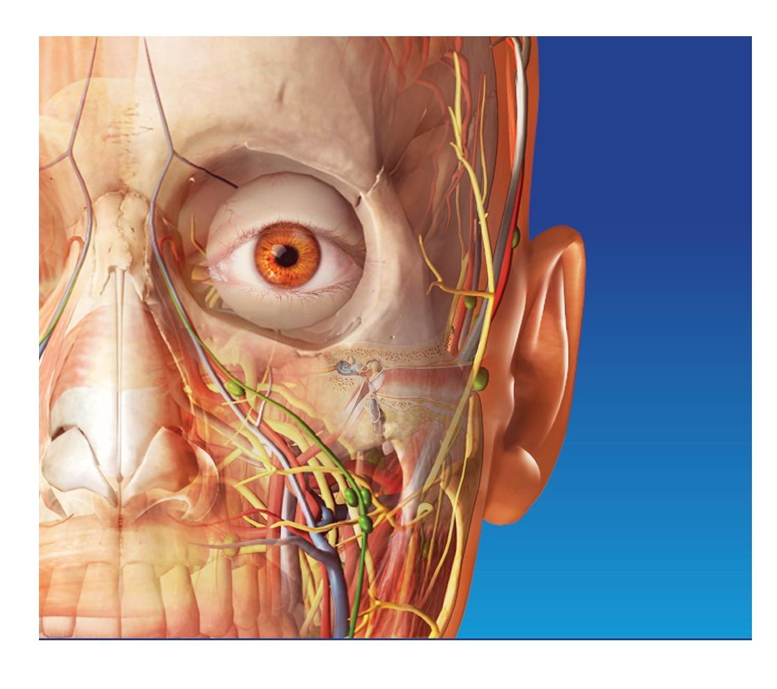 Atlas De Anatomía Humana 3d 7 Ed Envio Digital Gratis - $ 165,00 en ...